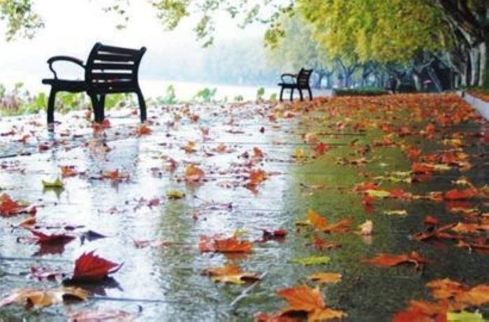 江苏大学信息门户美文窗外的秋雨