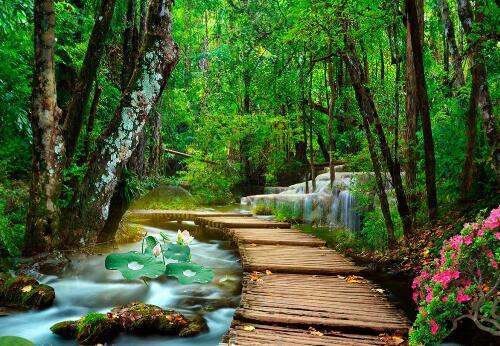 分享对江南小镇小桥流水的喜欢